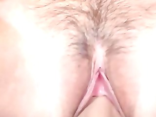 haley butt fuck inside fishnets